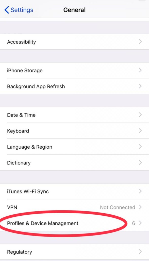How to Trust an app iPhone iOS 13