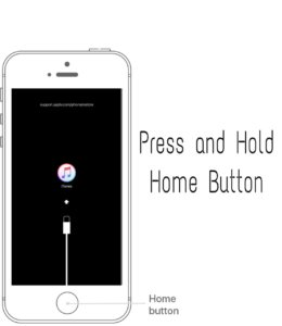 Press and Hold home button and connect USB Cable