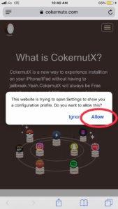 cokernutx tik tok