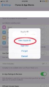 View Apple ID