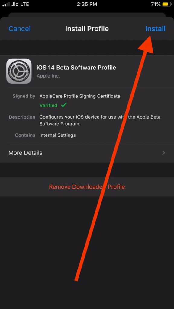 Install iOS 14 Developer Beta Profile
